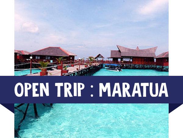 paket wisata open trip maratua